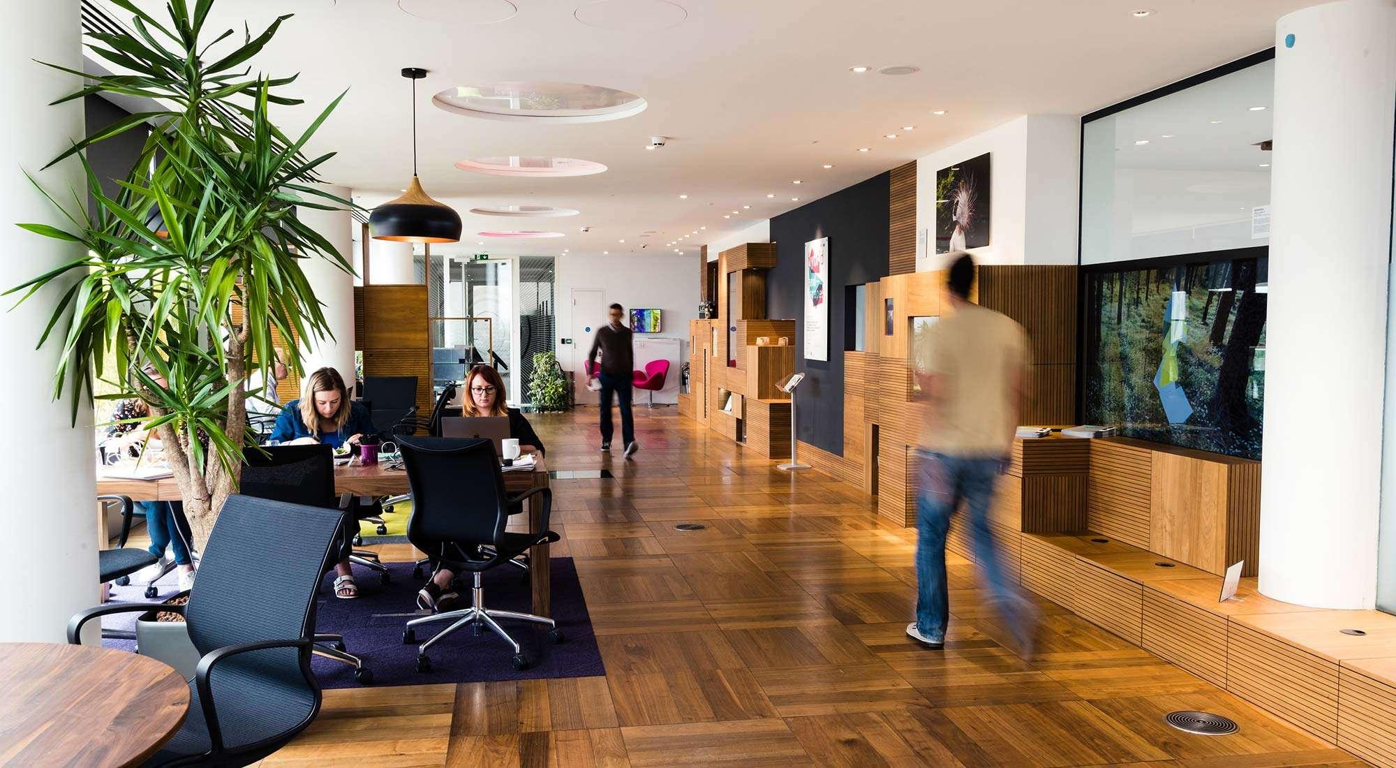 office interior design fitout